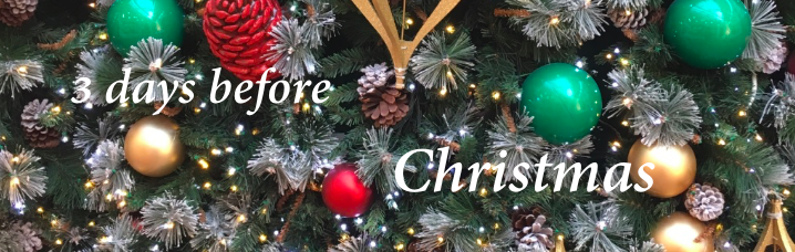 christmas countdown 22.png