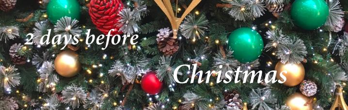 christmas countdown 23 .png