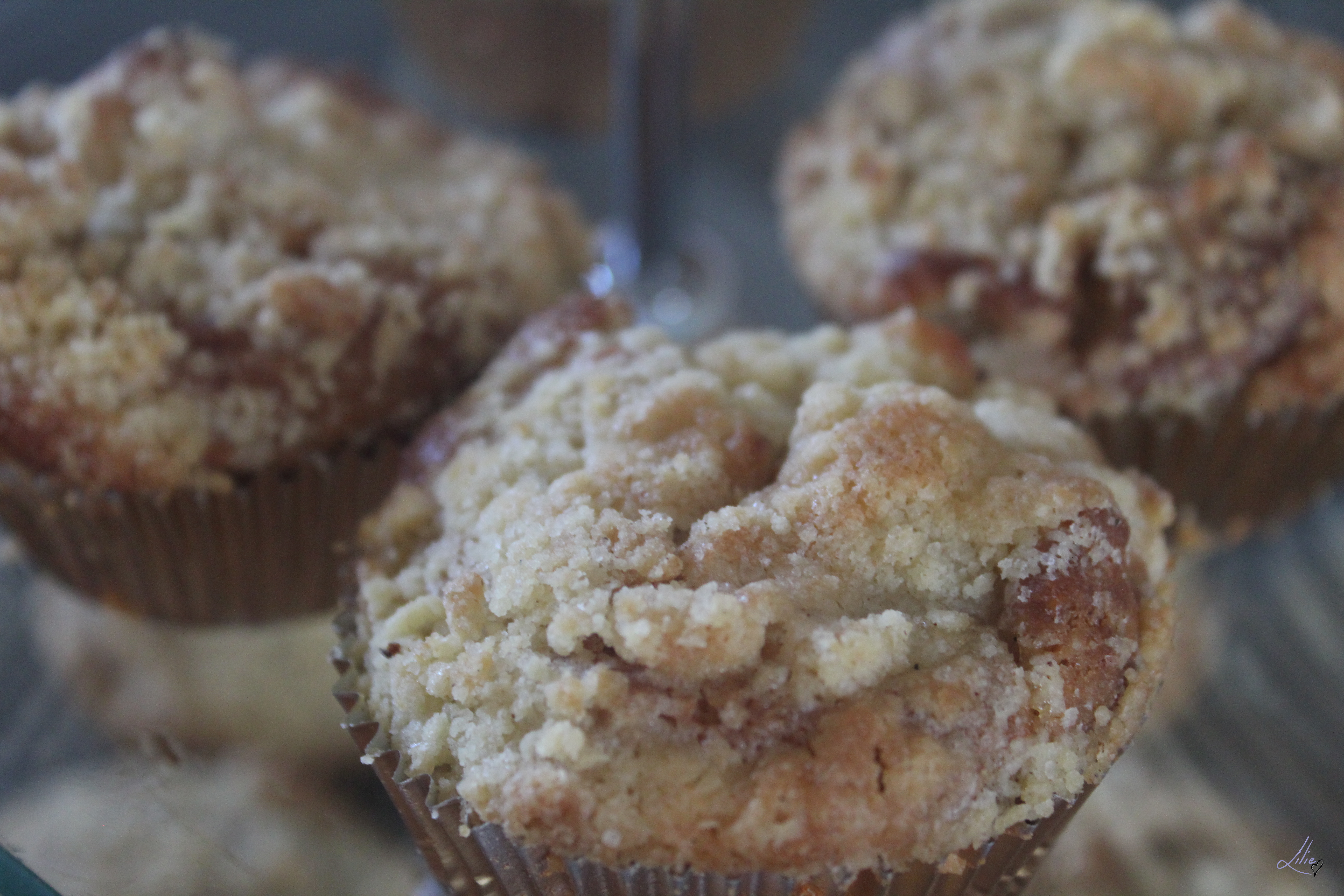 muffin pomme 17
