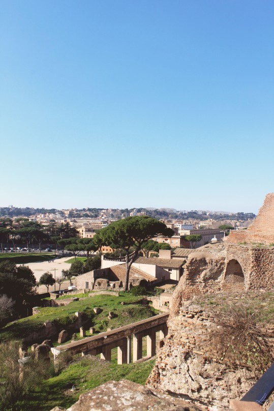 article rome 4
