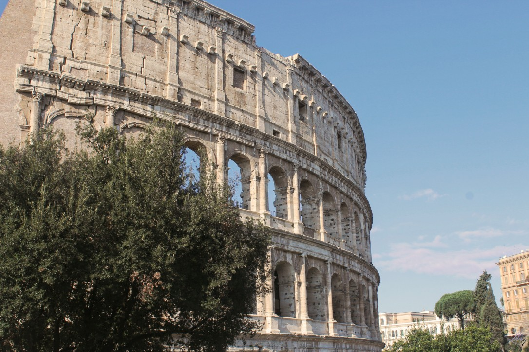 article rome 8
